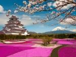 Mt Fuji with pagoda