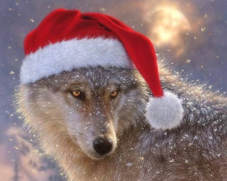 Christmas Wolf.Christmas Wolf Dogs Animals Background Wallpapers On