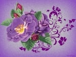 PURPLE ROSE ON PURPLE