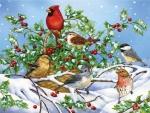 Hollybirds