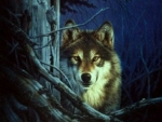 'Night of the wolf'......