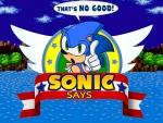 Sonic Says Wallpaper