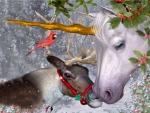 Xmas Reindeer and a Unicorn