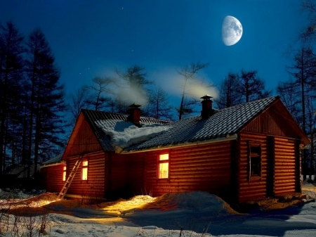 Winter Night - moon, snow, chalets, trees, winter, winter night, light