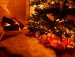 ☆ Merry Christmas ☆