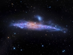 Star Streams and the Whale Galaxy