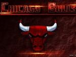Chicago Bulls Wallpaper