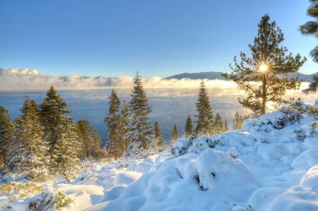 Lake Tahoe in winter - USA, Scenery, Forest, Nevada, Nature, Winter, California, Tahoe, Lake, Sierra, Snow