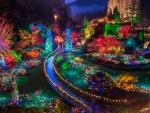 ❄ Christmas Wonderland of Lights ❄
