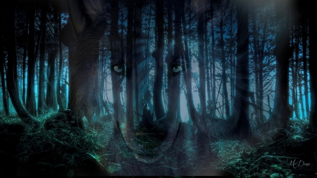 wolf tribute forests amp nature background wallpapers on