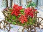 Winter Poinsettias