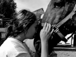 The Girl Kiss Horse