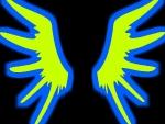 Wings Baby