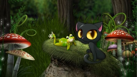 Black Cat And Frog Forest Grass Woods Big Eyes Spring