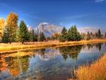 Snake River at Autumn