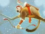 The monkey archer