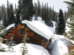 Winter At Jasper NP, Canada