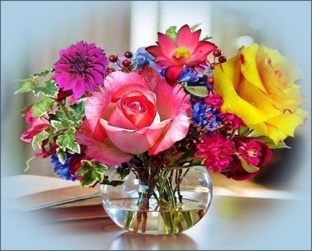 Mixed Rose - flowers, nice, rose, mixed