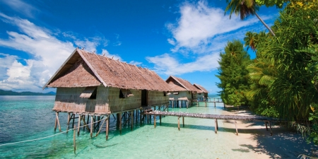 Papua Diving Resort - dive, beautiful, trees, overwater cabins, sea, beach, sand, paradise, Indonesia, island, tropical
