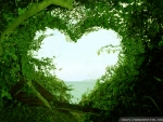 Love in Nature
