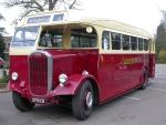 dennis bus