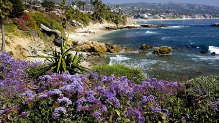 Beautiful Scenery - seaside, flowers, nature, landscape
