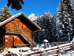 Canadian Mountain Cabin