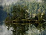 gorgeous island reflected in a forest lake