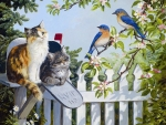 Songbirds and Friends