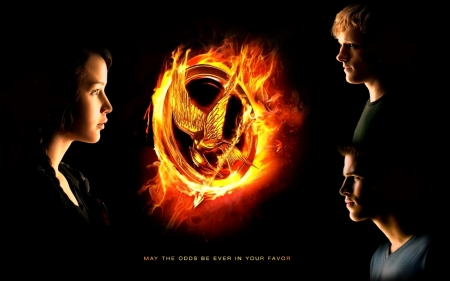 The Hunger Games Catching Fire 2013 Movies Entertainment Background Wallpapers On Desktop Nexus Image 2070201