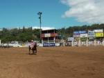 Cowgirl barrelracing