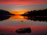 Reflection Beauty