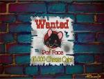 Wanted Rat Face