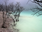 misty rocky lakeshore