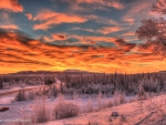 Sunset at Alaska Highway