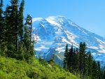 nisqually glacier washington