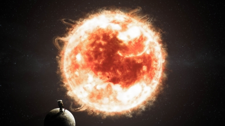 Fire Rose - life, astronaut, rose, sun, star, the little prince, planet, embryo