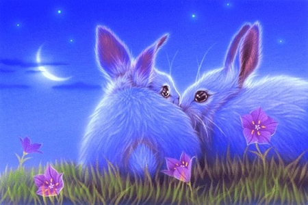 Duration of Love - animals, bunnies, kiss, love four seasons, beloved valentines, love, cute, rabbits, flowers, moons