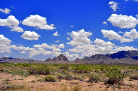 New Mexico - MEXICO, DESERT, NEW, MOUNTAINS