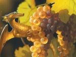 Grapes dragon