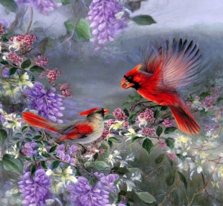 Springtime - wisteria, blossoms, artwork, birds, painting