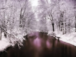 Pond in the Snow