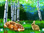 Springtime in Forest