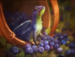 Blueberries dragon