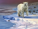 Polar Bear on Icy Shore