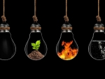 four elements of life trapped in lightbulbs