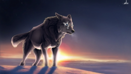 Magical Wolf At Sunset