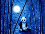 Pandas in bamboo forest