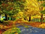 Best of Autumn