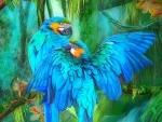 Blue Macaws Snuggle
